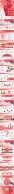 精致大气红色系-年终年会展示多用型示例8