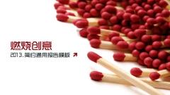 燃烧创意-2013商务通用模板