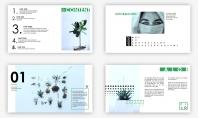 [ 小森林 ] 梦中的颜色植物PPT模板示例3