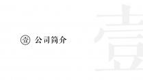【极简黑白】公司简介+公关咨询+项目提案+品牌规划示例3