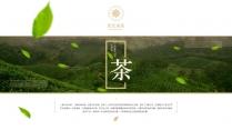 茶叶产品PPT展示模板