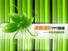 清新綠葉通用PPT模板