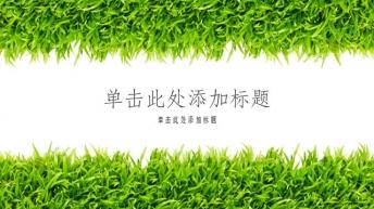夏日清凉小清新绿色ppt模版
