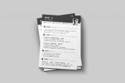 【一页纸简历】HR一眼相中PPT个人简历-173示例3