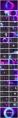 【變幻】夢幻藍紫漸變色科技ppt模板示例6
