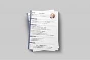 【一页纸简历】HR一眼相中PPT个人简历-174示例3