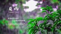 【简约·小清新】夏雨季节小清新 PPT模板