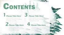 【绿色】欧美简约实用商业计划书项目报告示例3