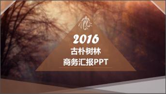 【009】欧美风茶色森林系商务汇报PPT模板