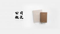 【极简主义12】高级商业计划书&黑白灰简约轻质感示例4
