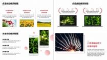 【极简风】大气质感潮流商务工作报告模板(附教程)示例5