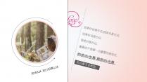 【思路及框架】唯美婚纱照演示PPT模板示例6