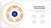 【经典商务】潮流蓝桔商务科技实用主义PPT模板8示例5