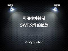 用VBA控制SWF文件的播放