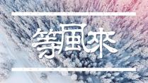 【引·等风来】性冷淡风文艺模板