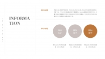 【北欧风】时尚优雅极简线条莫兰迪风PPT模板4示例6