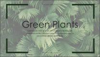 【E】绿色简约深林气息商务模板