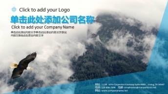 大气通用【企业画册】【商务提案】PPT模板4