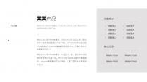 【商务】深蓝极简欧美大气商务通用PPT模板示例6