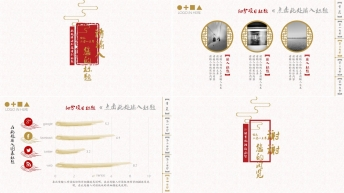 【网页风格】清新大气中国风公司简/商务报告模板二示例6