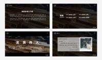「宝藏系列」经典复古中文汇报模板示例4