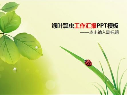 绿叶瓢虫工作汇报ppt模板