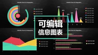 【可編輯】實用商務多彩信息圖表