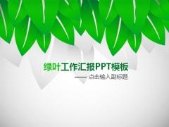 绿叶工作汇报PPT模板