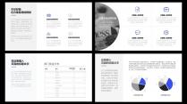【精致视觉23】蓝色商务风工作总结汇报模版示例4