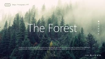 【全动态】森林细线现代感实用模板