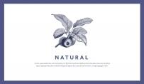 【拟态】手绘自然文艺杂志风PPT模板
