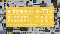 【合集】【中文模板大全】大气简约可视化通用(含四套