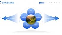 蓝色(三十八)大气工作报告模板【264】示例4