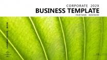 【蒼翠欲滴】極簡高端大氣綠色商務報告年終匯報總結