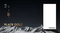 【动画PPT】黑金商务风品质模板38.0示例2