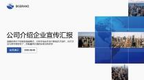 【完整框架】大气稳重公司介绍企业宣传品牌推介PPT示例2