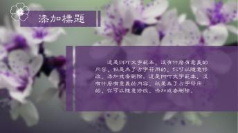 花语时尚浪漫唯美主题模板示例4