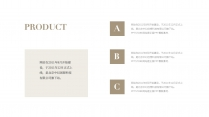 【北欧风】极简雅致白金商务PPT模板11示例4