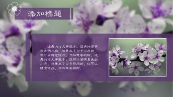 花语时尚浪漫唯美主题模板示例5
