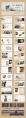 【合集·杂画疯】极简风格模板4套示例4