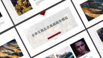 全中文高品质高端商务模版