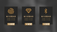 【轻奢极简】时尚欧美扁平化大气黑色金色模板示例6