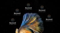【我家地理杂志】寻找星空中最惊艳的那只斗鱼示例6