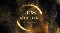 金色年终总结商务报告工作计划项目策划模板系列二十四示例2