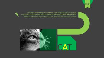 灰黑绿色科技高端运动商务汇报项目解说个人简介