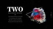 【我家地理杂志】寻找星空中最惊艳的那只斗鱼示例4