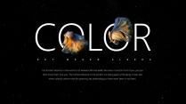 【我家地理杂志】寻找星空中最惊艳的那只斗鱼示例7