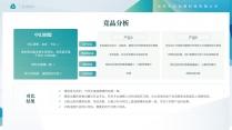 【商务】清新简洁实用主义商业计划书2示例6