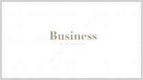 【北欧风】极简雅致白金商务PPT模板4示例2