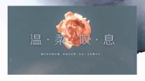 【引·温柔叹息】清新淡雅模板